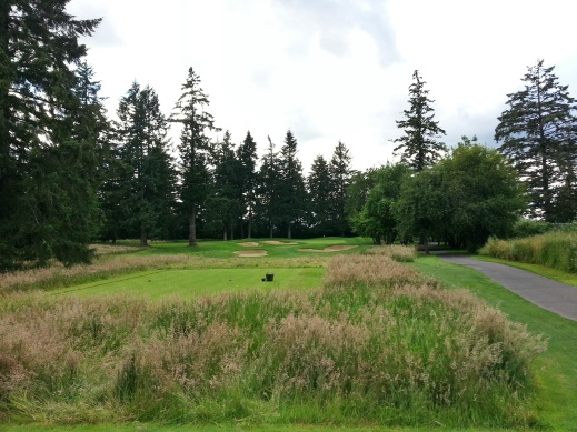 Pumpkin Ridge Witch Hollow Hole 10
